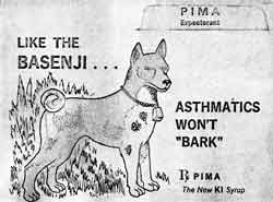 1972 Advert with Basenji